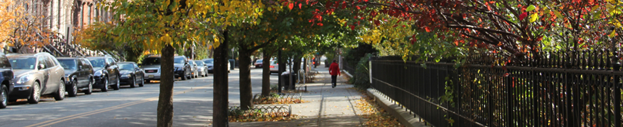 Fall-on-Montgomery-St-VVP